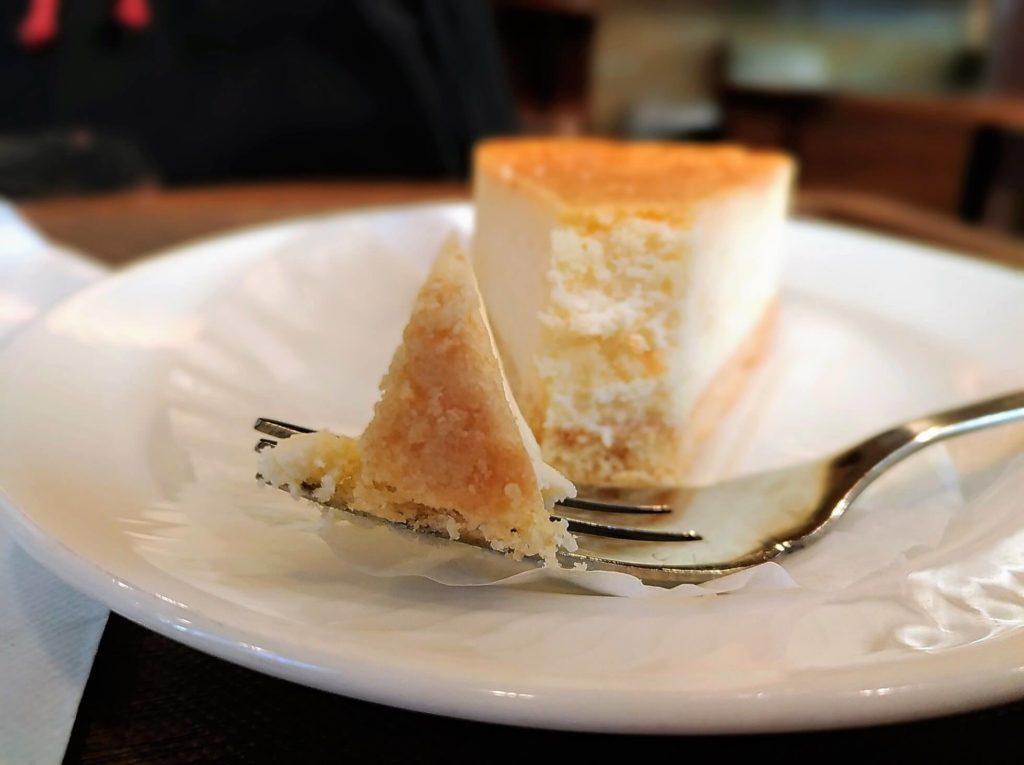 モリバコーヒー 濃厚ベイクドチーズケーキ 写真 (1)