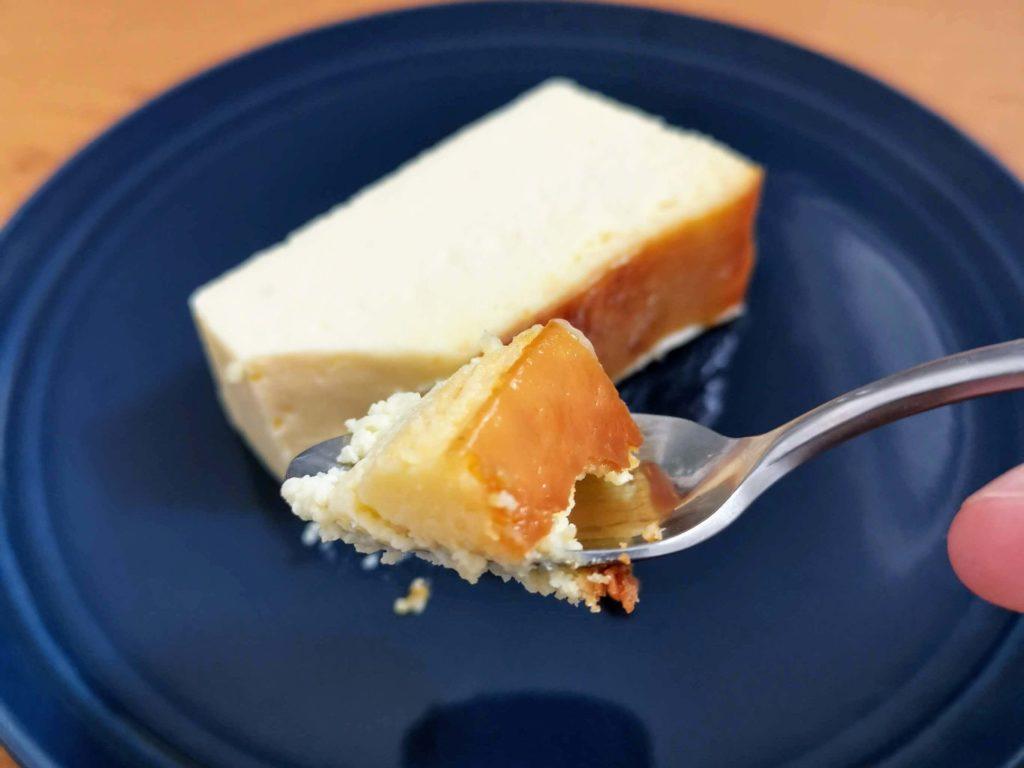 ミスターチーズケーキ (24)