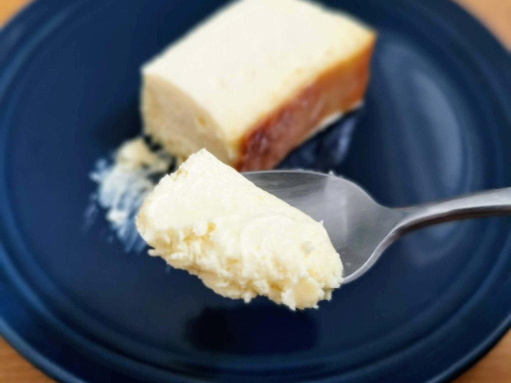 ミスターチーズケーキ (1)